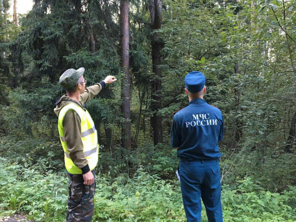 В Новочеркасске возобновят работу межведомственные патрульные группы