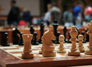 Сборная Новочеркасска по шахматам привезла домой бронзовый кубок