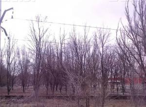Более полутора миллионов рублей Новочеркасск потратит на проекты благоустройства общественных территорий