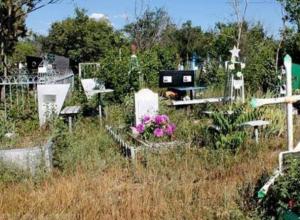 Незаконные свалки с кладбищ Новочеркасска уберет местный предприниматель