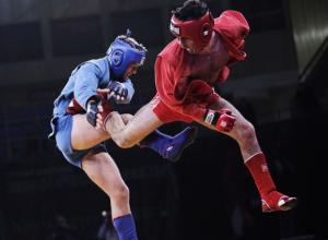 Самбист из Новочеркасска выиграл золото чемпионата ЮФО