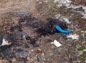 Сгоревший заживо в Новочеркасске мужчина был мертвецки пьян и хотел прикурить сигарету