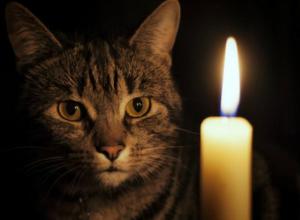 В четверг, 19 апреля жители 9 улиц Новочеркасска останутся без света