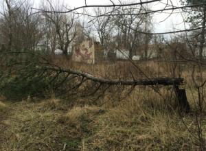 Экоактивисты Новочеркасска составили петицию главе города