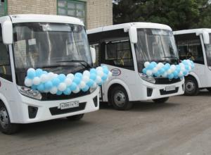 На дороги Новочеркасска выйдут новые автобусы