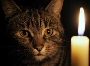 Последний день рабочей недели пройдет без света для жителей 15 улиц Новочеркасска