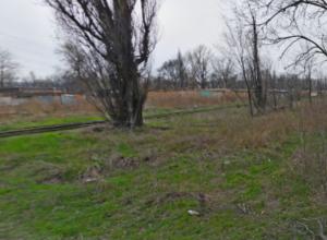 Отрезанную женскую голову нашли в Новочеркасске