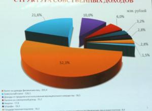 Сити-менеджер Новочеркасска призвал подчиненных активнее увеличивать доходы