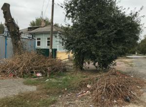 Электрики спилили и бросили ветки на улице Орджоникидзе в Новочеркасске