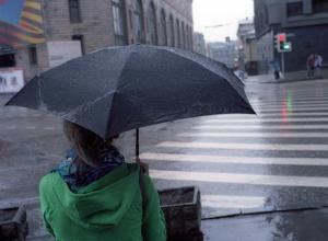 Пасмурная погода в Новочеркасске в праздничные дни будет сопровождаться сильным ветром
