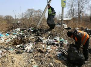 Новочеркасскую администрацию заставят убрать 25 нелегальных свалок на улицах города