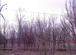 Новочеркасцам не удастся погулять в полностью благоустроенном парке микрорайона Октябрьский в этом году
