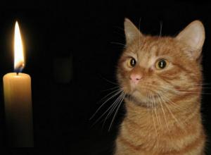 20 июня жители 12 улиц Новочеркасска останутся без света