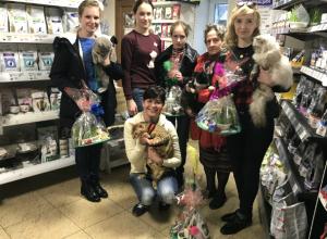 Самые красивые коты Новочеркасска получили вкусности и необычные игрушки