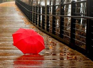 Предстоящая неделя начнется для новочеркасцев с дождя