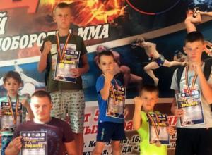 Юные новочеркасские спортсмены завоевали 5 медалей на турнире по смешанным единоборствам