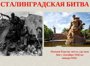 В Новочеркасске открылась выставка в честь 75-летия Сталинградской битвы