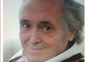Семидесятилетний пенсионер пропал из стационара больницы в станице Кривянской под Новочеркасском