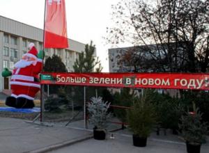 Новогодние елки появились в Новочеркасске