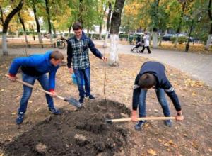 Курильщики из Новочеркасска подтвердили отказ от вредной привычки посаженными деревьями