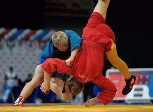 Молодежный чемпионат области по самбо стал успешным для новочеркасских спортсменов