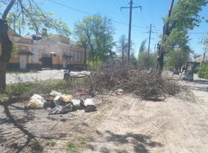 Гора сухих веток выросла на улице Александровской в Новочеркасске