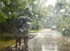 Жара сдает позиции: синоптики пообещали Новочеркасску дождь