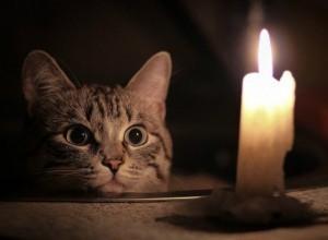В первый рабочий день 23 июля десятки домов в Новочеркасске останутся без света