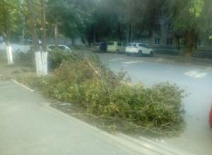 Ветки опиленных аварийных деревьев побросали возле детской поликлиники в Новочеркасске