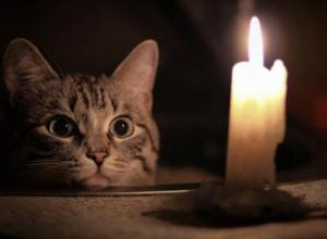 Предпоследний день рабочей недели пройдет без электричества для многих жителей Новочеркасска