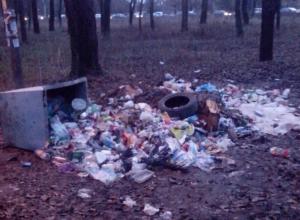 Парк НЭВЗа на Соцгороде постепенно превращается в помойку