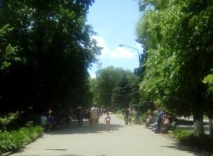 Жаркая и сухая погода ждет жителей Новочеркасска в наступающие выходные
