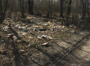 Жители микрорайона Хотунок Новочеркасска гуляют с детьми лавируя среди ям и гор мусора