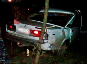 «Семерка» слетела с трассы, протаранив дерево и забор под Новочеркасском