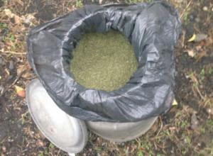 Крупного наркоторговца с 22 килограммами марихуаны схватили в Новочеркасске