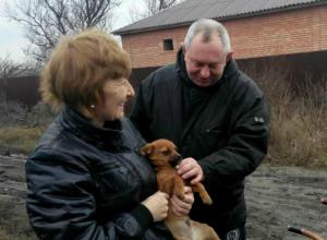Как помочь бездомным животным зимой? Руководитель новочеркасского приюта для собак,  Елена Мельникова обращается к неравнодушным горожанам