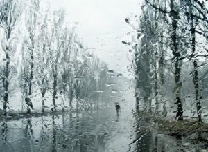 Рабочая неделя начнется с дождя в Новочеркасске