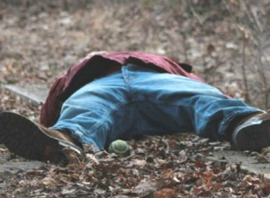 Мертвого изрезанного мужчину с собачьими укусами нашли в Новочеркасске