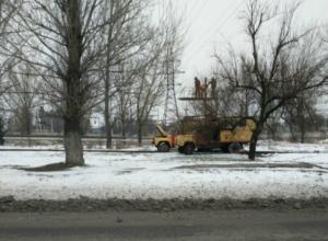 Коварный похититель трамвайных проводов пойман в Новочеркасске