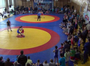 Юные борцы из Новочеркасска завоевали шесть медалей на детском турнире