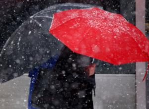 Синоптики обещают потепление и дождь на выходных в Новочеркасске