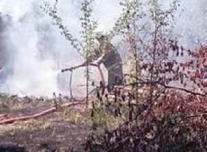 Три садовых участка сгорели в новочеркасском микрорайоне Молодежный