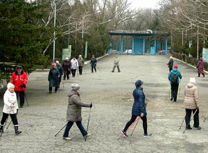 Новочеркасский «Союз-НовоХод» не останавливают снег и ветер: любители скандинавской ходьбы тренируются в любую погоду