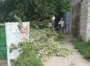 Брошенные спиленные ветки на улице Думенко в Новочеркасске возмутили горожан