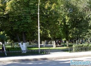 В городских парках Новочеркасска можно подцепить клеща