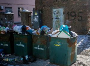 Мужчина из Новочеркасска выбросил в мусорный бак два миллиона рублей