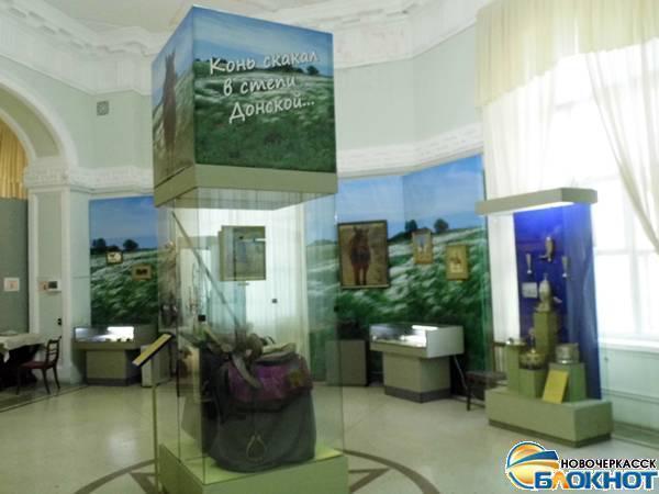 В Новочеркасском музее посвятили экспозицию лошадям