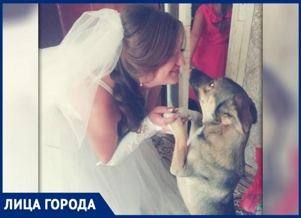 Волонтер из Новочеркасска Нина Цверкунова спасла десятки жизней оказавшихся на улице животных