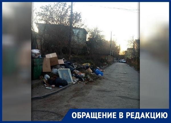 «Платим мы, а мусорят все, кому не лень», - новочеркасцы
