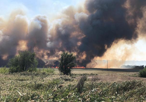 В Новочеркасске площадь ландшафтного пожара увеличилась в несколько раз